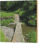 Footbridge Over A Creek Wood Print