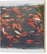 Koi Pond With Framing Wood Print
