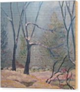 Forest At Twilight Wood Print