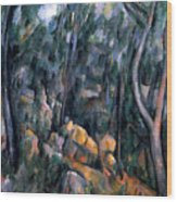 Forest In The Caves Above The Chateau Noir Wood Print