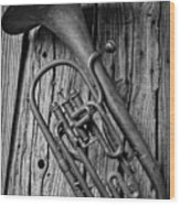 Forgotten Tuba Wood Print