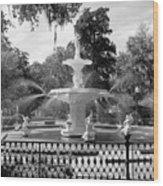 Forsyth Fountain Park Wood Print