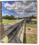 Fort Moultrie Cannon Wood Print