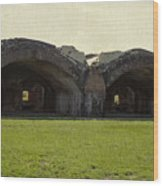 Fort Pickens Arches Wood Print