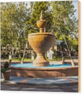 Fountain At Tlaquepaque Wood Print