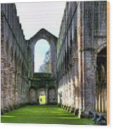 Fountains Abbey 7 Wood Print