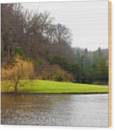 Fountains Abbey  Lake 1 Wood Print