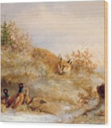 Fox And Pheasants In Winter Wood Print by Anonymous