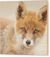 Foxy Face Wood Print