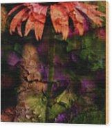 Fragmented Echinacea Wood Print