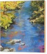 From The Bridge Wood Print