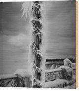 Frozen Over Niagara Falls Wood Print