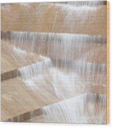 Ft Worth Water Gardens Wood Print