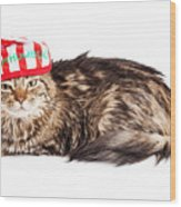 Funny Grumpy Christmas Cat Wood Print
