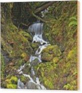 Streaming Through Rainforest Rubble Wood Print