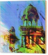 Gadi Sagar  Wood Print