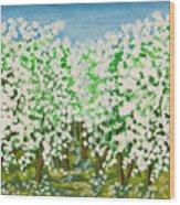 Garden In Blossom Wood Print