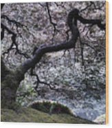 Garden View In Blue Wood Print