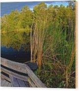 Gator Lake Wood Print