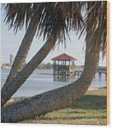 Gazebo Dock Framed By Leaning Palms Wood Print