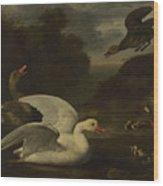 Geese And Ducks Wood Print