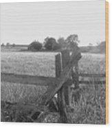 Gettysburg  Landscape Wood Print