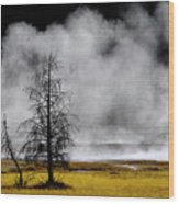 Geysers And Steam Rising In Yellowstone National Park Wood Print