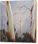 Ghostgums Wood Print