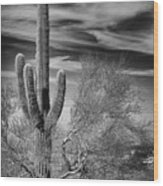 Giant Saguaro Wood Print