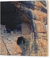 Gila Cliff Dwellings National Monument Wood Print