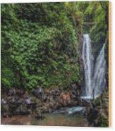 Git Git Waterfall - Bali Wood Print