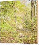 Glimpse Of A Stream In Autumn Wood Print