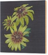 Gloriosa Daisy Wood Print