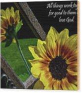 God's Creation Wood Print