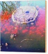 Gold Fish Pond Wood Print