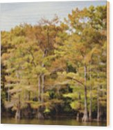 Golden Bayou Wood Print
