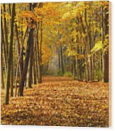 Golden Days Wood Print