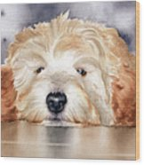 Goldendoodle  Wood Print