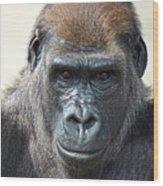 Gorilla 1 Wood Print