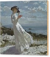 Grace Reading At Howth Bay Wood Print by Sir William Orpen
