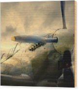 Grace Spitfire Ml407 Wood Print