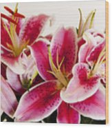 Graceful Lily Series 11 Wood Print