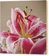 Graceful Lily Series 14 Wood Print