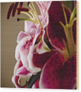 Graceful Lily Series 16 Wood Print