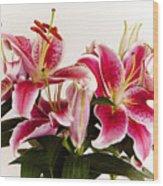 Graceful Lily Series 9 Wood Print