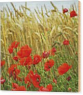 Grain And Poppy Field Wood Print