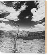 Grand Canyon Landscape Wood Print