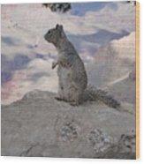 Grand Canyon Squirrel Wood Print