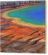 Grand Prismatic Spring Yellowstone National Park Tourists Viewin Wood Print