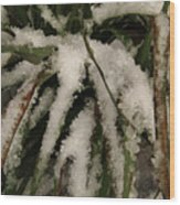 Grass In Snow 2 Wood Print